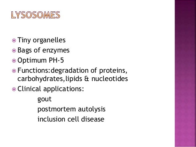 Functions:  ETC  ATP generation  TCA cycle; beta oxidation of FA  Ketone body production  A part of urea synthesis ,h...