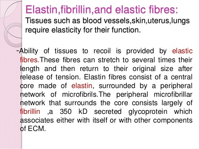 Cell adhesion proteins: It basically include fibronectin and laminin. Fibronectin is a large protein that binds to many mo...