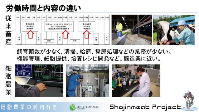 従 来 畜 産 労働時間と内容の違い 細 胞 農 業 飼育頭数が少なく、清掃、給餌、糞尿処理などの業務が少ない。 機器管理、細胞提供、培養レシピ開発など、醸造業に近い。