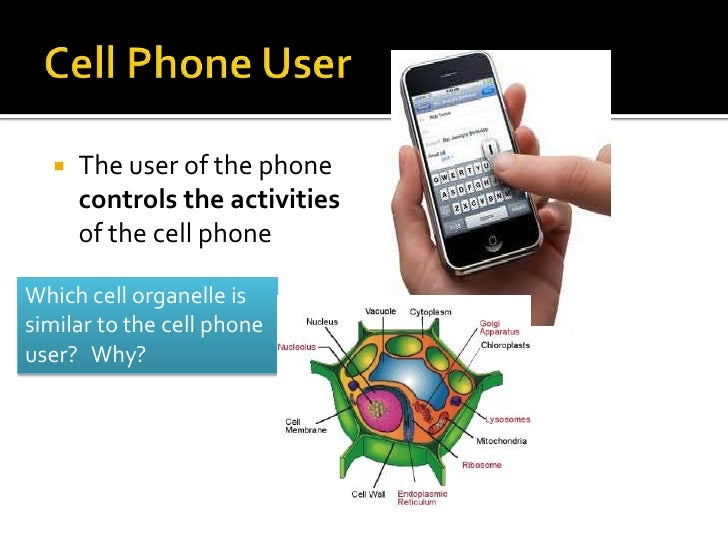Cell analogy - What to do with used cell phones five practical solutions ...