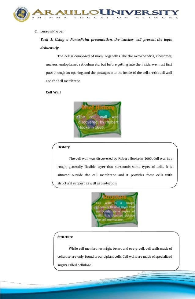 detailed lesson plan in biology topic plant and animal cell