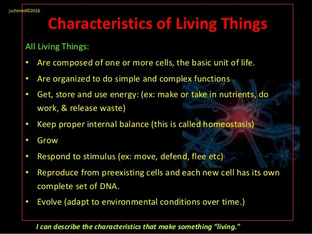 8 characteristics of life examples