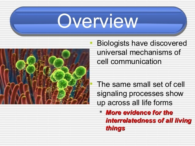 ap biology cell signaling essay If the cell is a secretory cell, how is the protein form part (b) eventually targeted, packaged and secreted to the exterior of the cell #68 (2005) protein synthesis is vital for cell growth and metabolism.