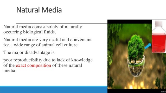 Cell Culture Different Type Of Cell Culture Media Types