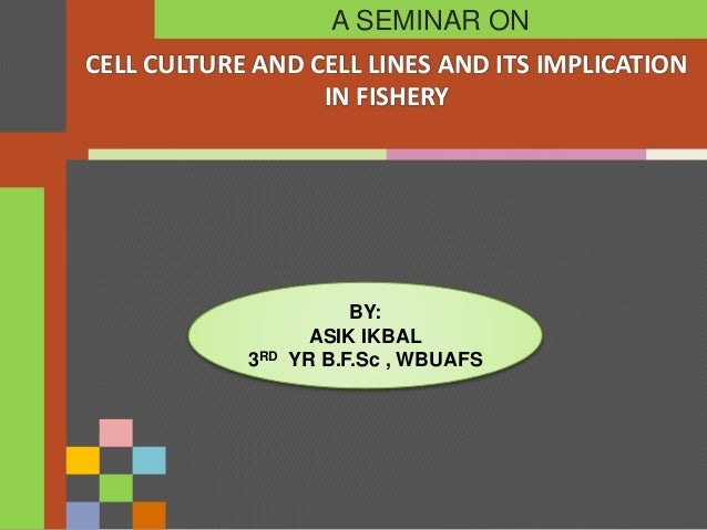 CELL CULTURE AND CELL LINES AND ITS IMPLICATION IN FISHERY A SEMINAR ON BY: ASIK IKBAL 3RD YR B.F.Sc , WBUAFS
