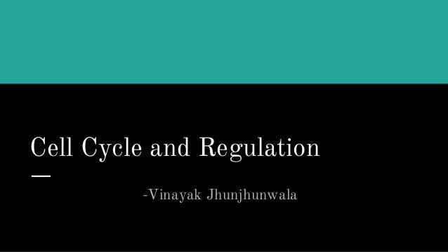 Cell Cycle and Regulation -Vinayak Jhunjhunwala