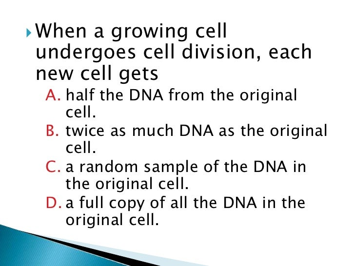 cell division essay questions 190 multiple-choice questions, a number of which  questions in the gre  biology test, paying  (c) chromosome replication without cell division.
