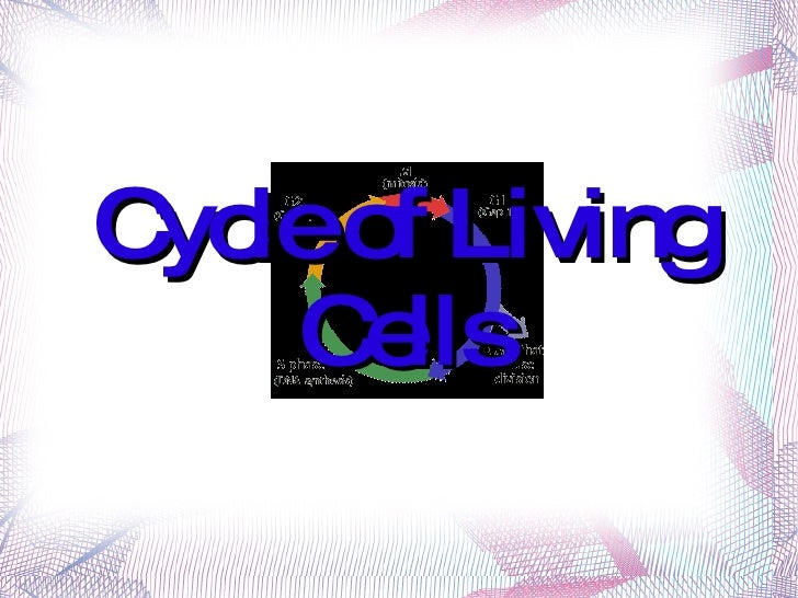 Cycle of Living Cells