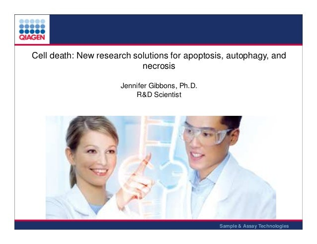 Cell death: New research solutions for apoptosis, autophagy, and necrosis Jennifer Gibbons, Ph.D. R&D Scientist  Sample & ...