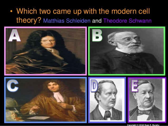 • Which two came up with the modern cell theory? Matthias Schleiden and Theodore Schwann Copyright © 2010 Ryan P. Murphy