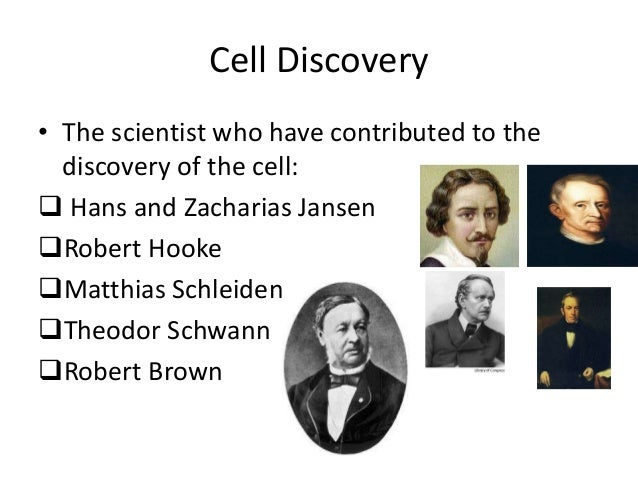 Cell discovery & cell theory