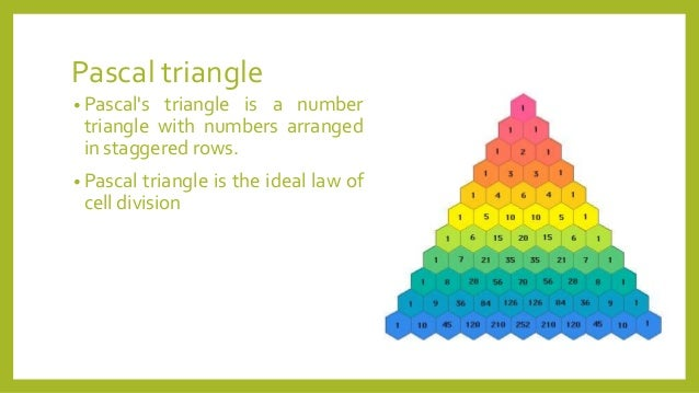 Blaise pascal triangle