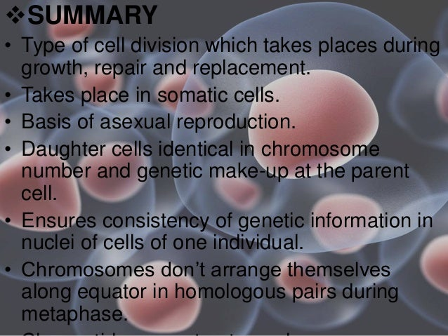 Terminalisation occurs during asexual reproduction
