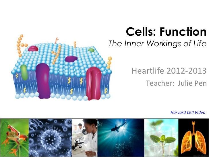 Cells: FunctionThe Inner Workings of Life      Heartlife 2012-2013         Teacher: Julie Pen                Harvard Cell ...