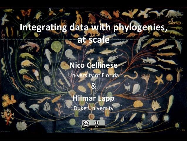 Integra(ngdatawithphylogenies, atscale NicoCellinese UniversityofFlorida & HilmarLapp DukeUniversity