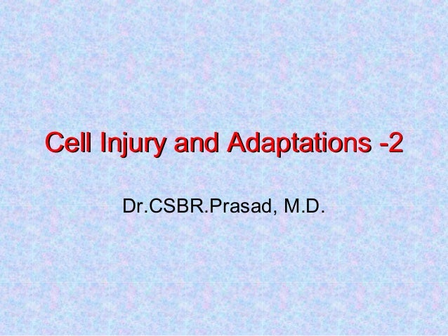 Cell Injury and Adaptations -2Cell Injury and Adaptations -2 Dr.CSBR.Prasad, M.D.