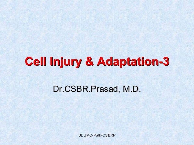 SDUMC-Path-CSBRP Cell Injury & Adaptation-3Cell Injury & Adaptation-3 Dr.CSBR.Prasad, M.D.Dr.CSBR.Prasad, M.D.