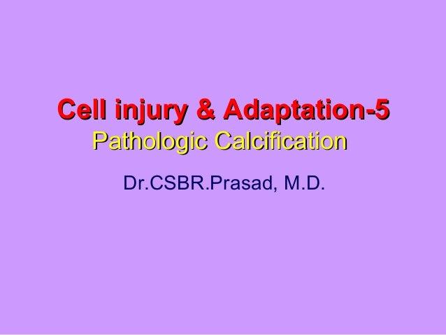 Cell injury & Adaptation-5Cell injury & Adaptation-5 Pathologic CalcificationPathologic Calcification Dr.CSBR.Prasad, M.D.