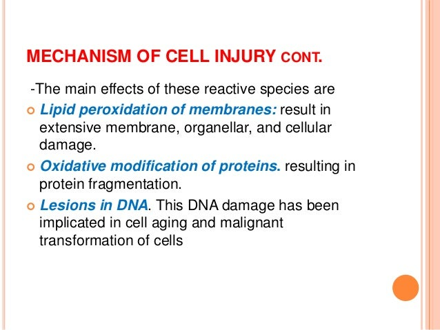 Cell injury and degenerations