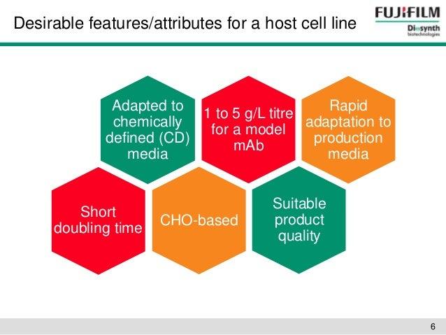 Stem Cell Basics III.