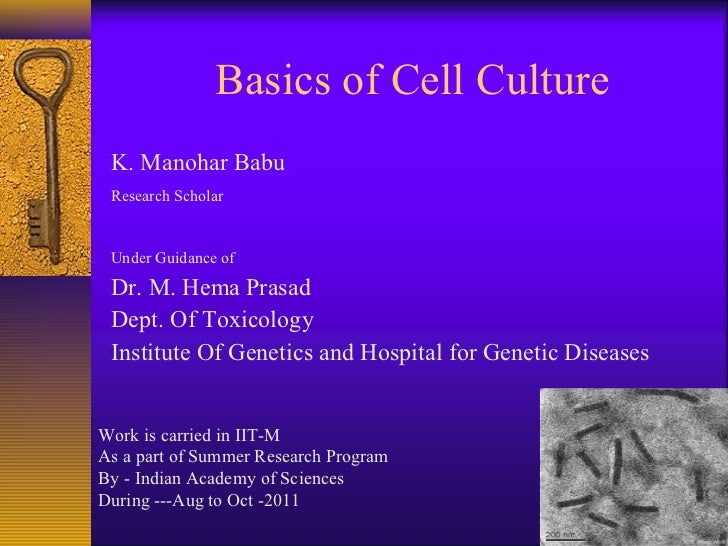 Basics of Cell Culture K. Manohar Babu Research Scholar Under Guidance of Dr. M. Hema Prasad Dept. Of Toxicology Institute...