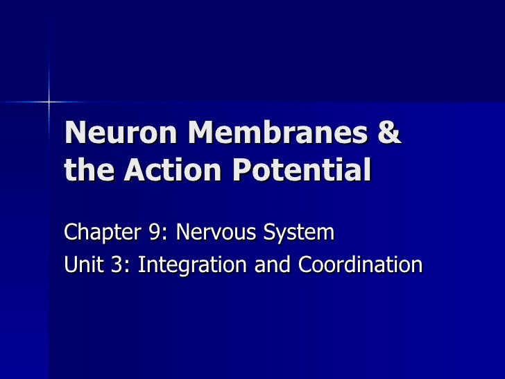Neuron Membranes & the Action Potential Chapter 9: Nervous System Unit 3: Integration and Coordination