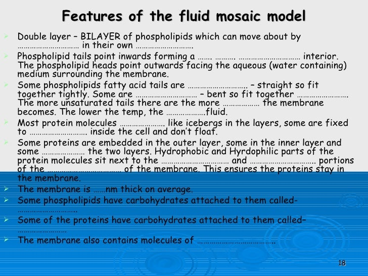 fluid mosaic model Sfb goes public  fluid mosaic model home | contact | imprint research  program projects associated projects mgk - integrated research training.
