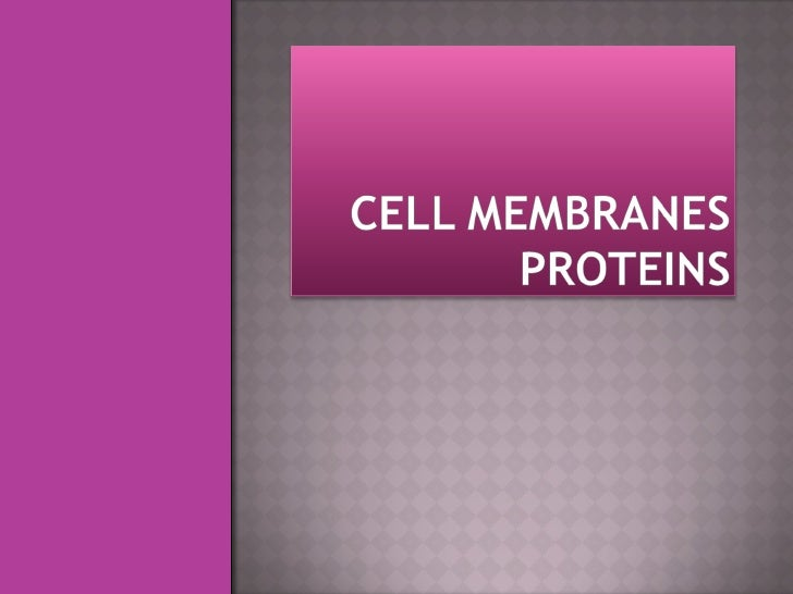Cell membranes proteins