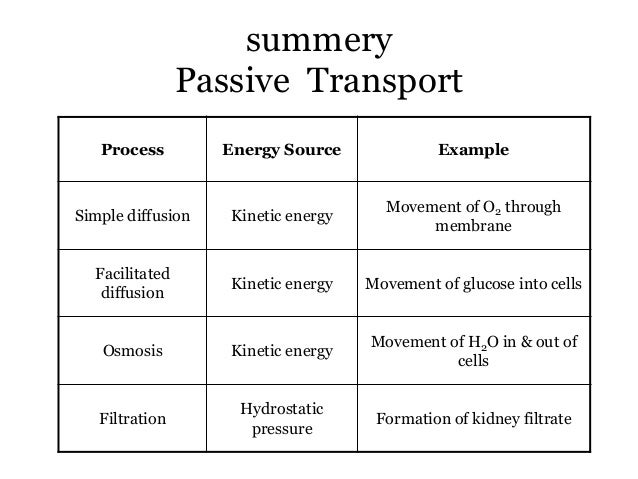 active and passive transport of plasma membrane