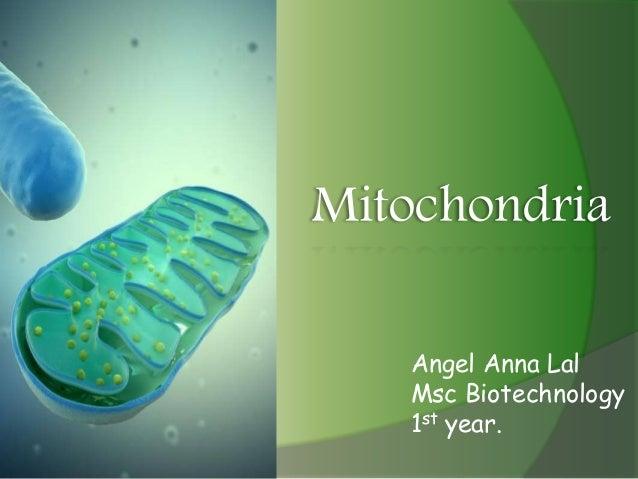 Mitochondria Angel Anna Lal Msc Biotechnology 1st year.