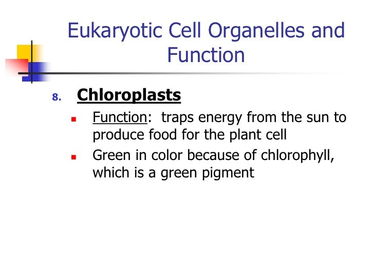 notes on cell structures essay Of the cell introduction to the cell parts of the eukaryotic cell the structures that make up a eukaryotic cell are determined by the specific functions carried out.