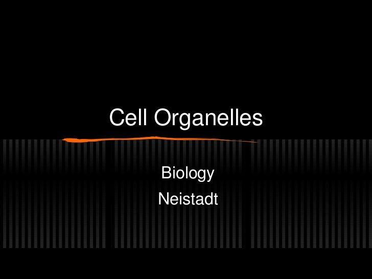 Cell Organelles     Biology    Neistadt