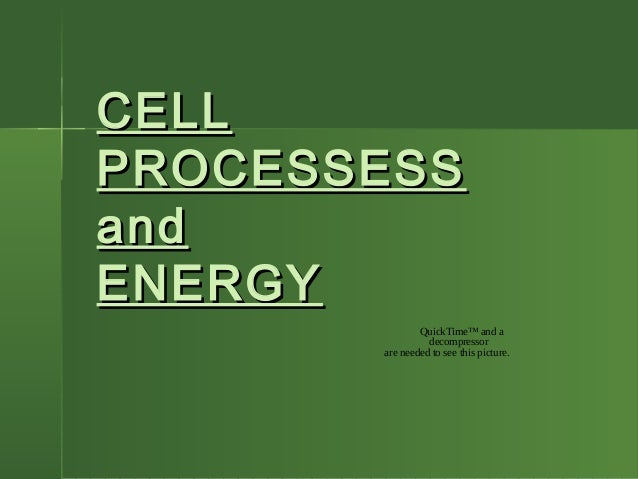 CELLCELL PROCESSESSPROCESSESS andand ENERGYENERGY QuickTime™ and a decompressor are needed to see this picture.