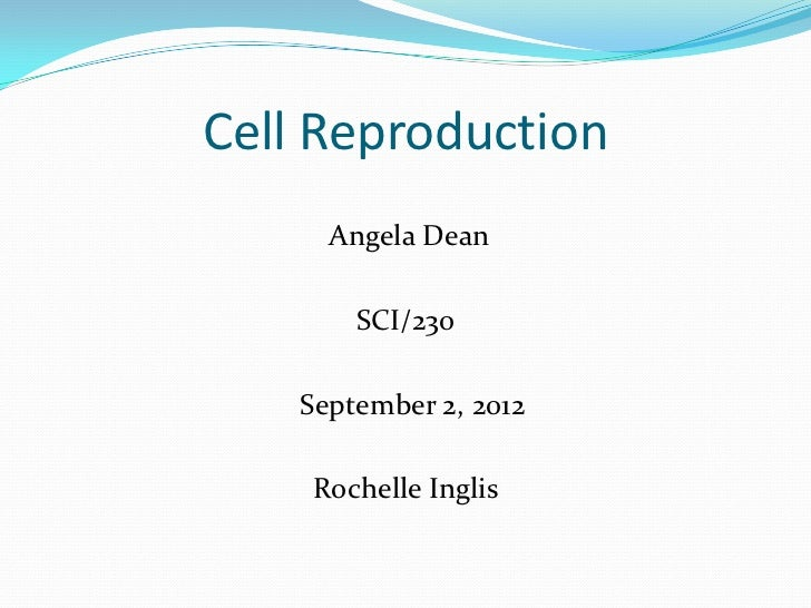 sci 230 cell reproduction presentation Sci 230 week 3 assignment cell reproduction presentation to buy this tutorial click below.