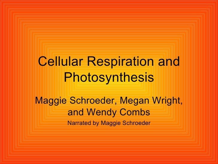 Cellular Respiration and Photosynthesis Maggie Schroeder, Megan Wright, and Wendy Combs Narrated by Maggie Schroeder