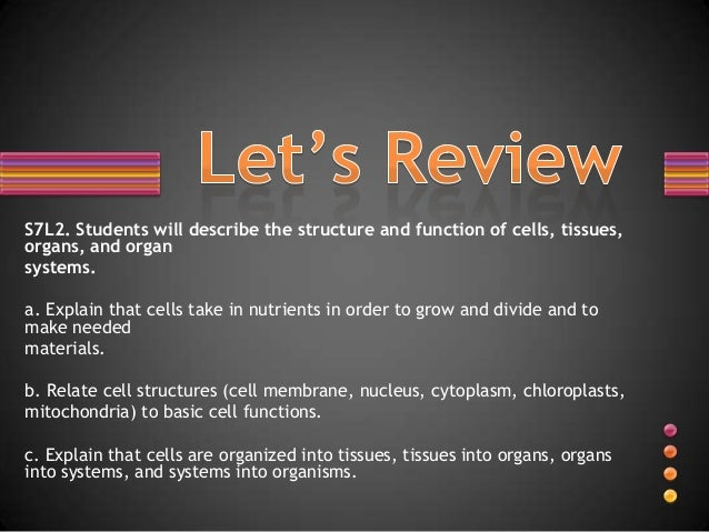 S7L2. Students will describe the structure and function of cells, tissues, organs, and organ systems. a. Explain that cell...