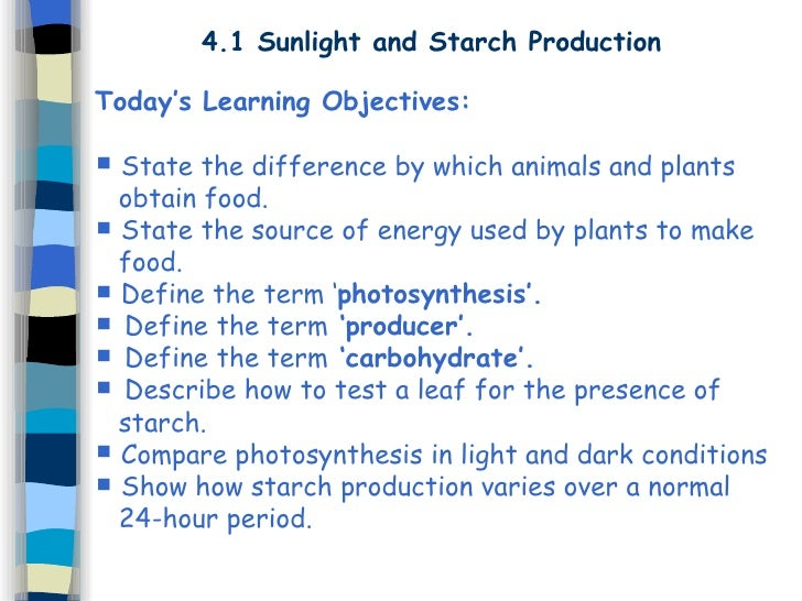 4.1 Sunlight and Starch Production Today's Learning Objectives:  State the difference by which animals and plants obtain ...