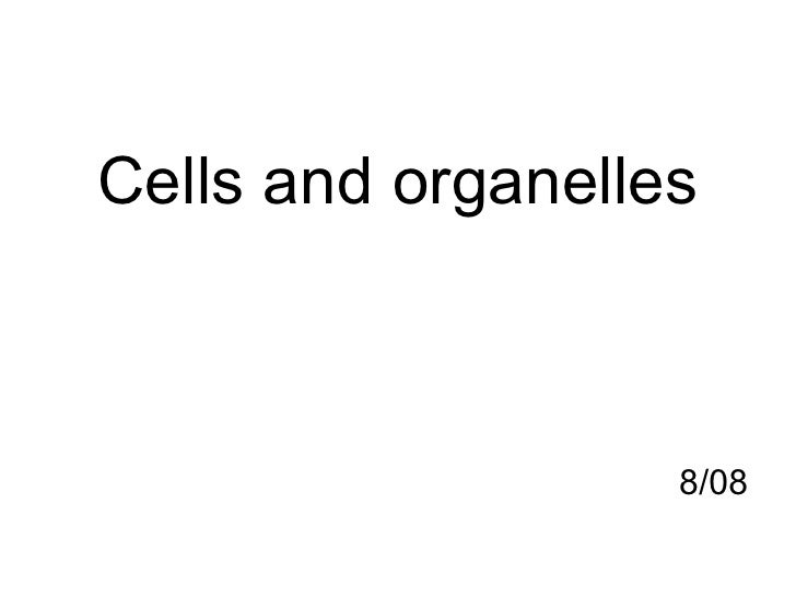 <ul><li>Cells and organelles </li></ul><ul><li>8/08 </li></ul>
