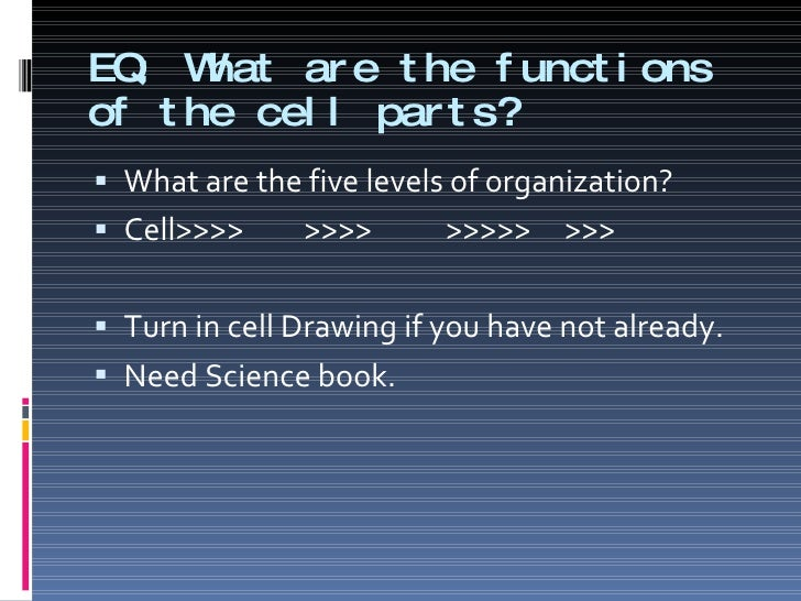 EQ: What are the functions of the cell parts? <ul><li>What are the five levels of organization? </li></ul><ul><li>Cell>>>>...