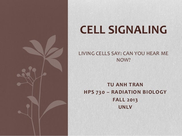 CELL SIGNALING LIVING CELLS SAY: CAN YOU HEAR ME NOW?  TU ANH TRAN HPS 730 – RADIATION BIOLOGY FALL 2013 UNLV
