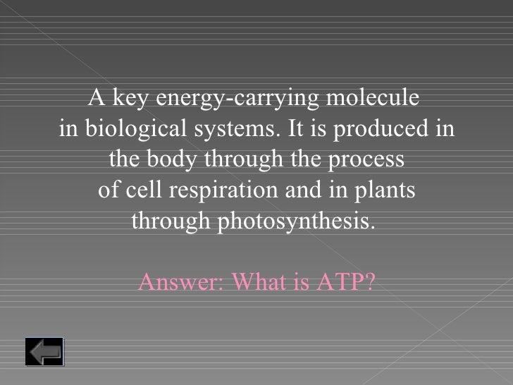 Cells Jeopardy