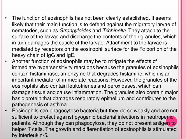 • The function of eosinophils has not been clearly established. It seems likely that their main function is to defend agai...