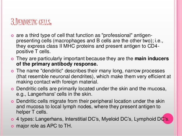 """3.DENDRETIC CELLS:  are a third type of cell that function as """"professional"""" antigen- presenting cells (macrophages and B..."""