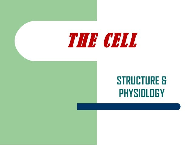 STRUCTURE & PHYSIOLOGY THE CELL