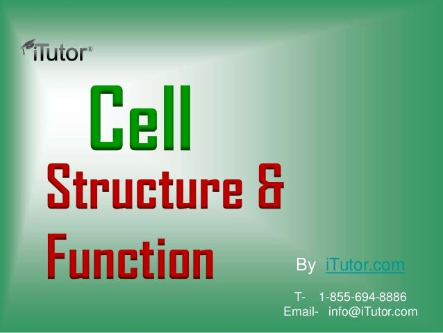 CellStructure &Function By iTutor.comT- 1-855-694-8886Email- info@iTutor.com