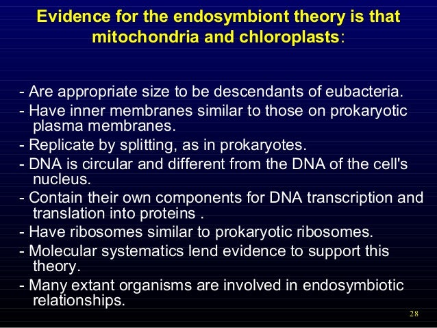 the endosymbiosis theory [endosymbiosis = cells are engulfed the endosymbiotic theory provides the most plausible explanation for the development of organelles within the eukaryotic.