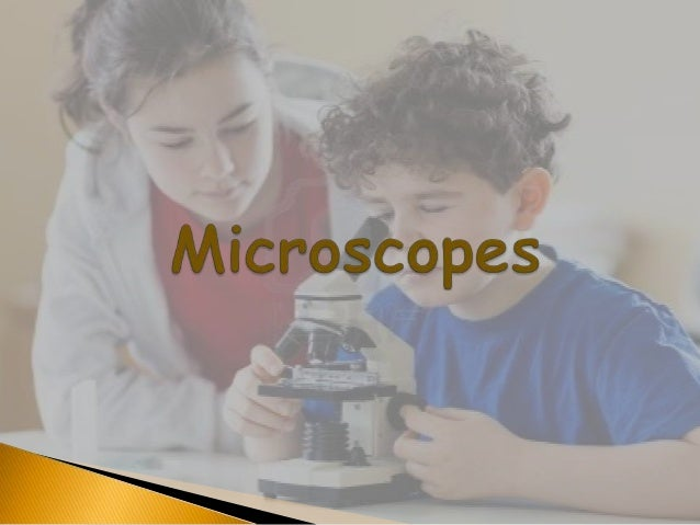 Microscope Slide 3