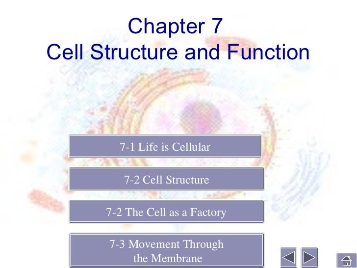 chapter 7cell structure and function 7 1 life is cellular 7 2 cell structure