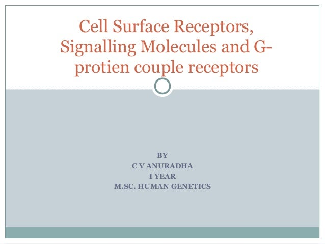 BY C V ANURADHA I YEAR M.SC. HUMAN GENETICS Cell Surface Receptors, Signalling Molecules and G- protien couple receptors