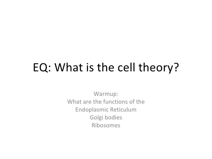 EQ: What is the cell theory? Warmup: What are the functions of the Endoplasmic Reticulum Golgi bodies Ribosomes